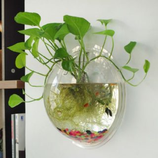 Garden-Supplies-Home-Hanging-Glass-Ball-Vase-Flower-Planter-Pots-Terrarium-Container-Home-Garden-Decoration.jpg